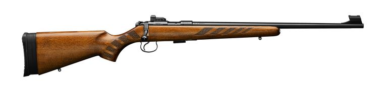 CZ_455_camp_rifle.jpg